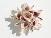 shell-blossom2_2